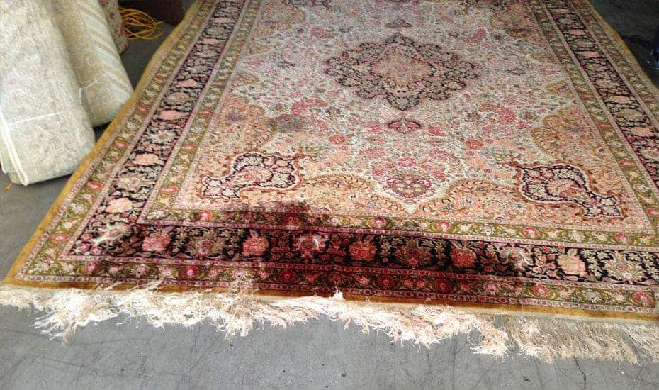 Rug Stain Removal Services Before